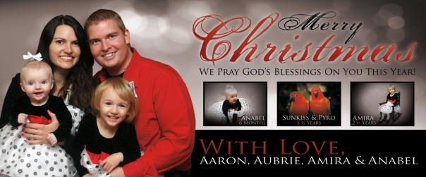 Vance Christmas Card 2012
